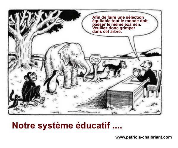 inégalités et systeme scolaire